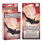 Accomodator Black